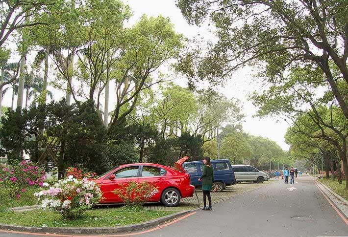 厦门大学校长表示两岸最好的大学是台湾大学图片